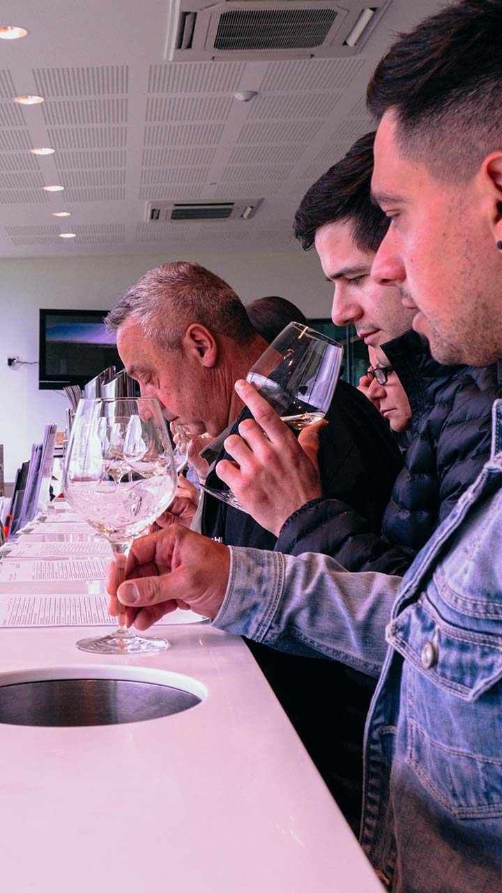 Wine Tasting Tours Melbourne